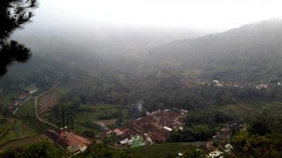 Dusun Brau, Daerah Terpencil Penghasil Susu Sapi Perah Utama di Kota Batu