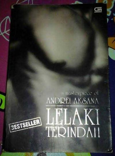 Mengenal Novel Lelaki Terindah