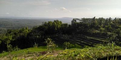 Sihir Damai untuk Bertetirah di Batoer Hill Gunungkidul