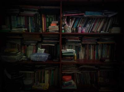 Perpustakaan Kecil di Kampung Saya