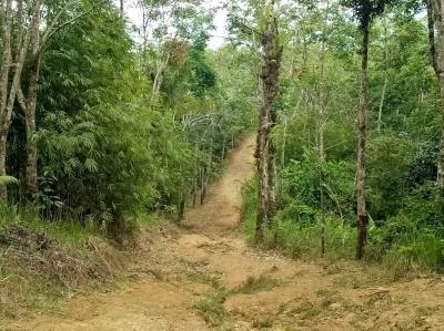 Masyarakat Desa Sifalago, Nias Selatan yang Belum Merdeka Seutuhnya