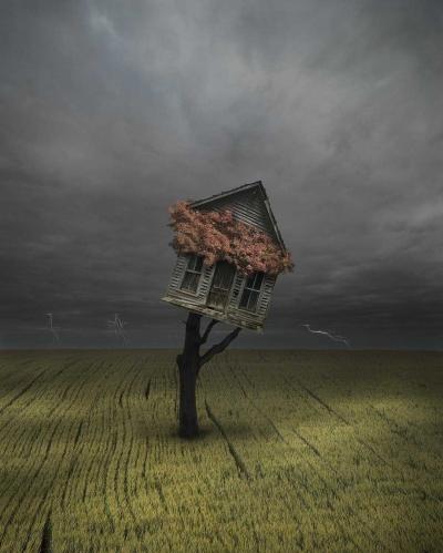 Doa Sebatang Pohon Kepada Dia yang Melewatinya