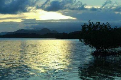 Pulau Cemara, Pulau Penuh Pesona di Kota Kecil