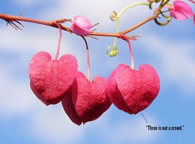 Cinta, Kata yang Tak Pernah Kering