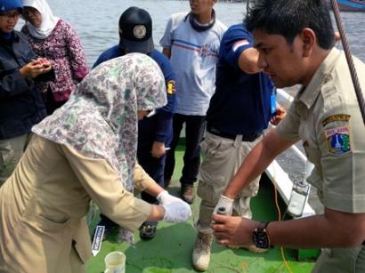 Fitoplankton Penyebab Kematian Ratusan Ribu Ikan di Ancol