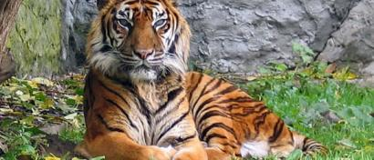 Taman Safari Prigen, Wujud Nyata Peduli Terhadap Lingkungan