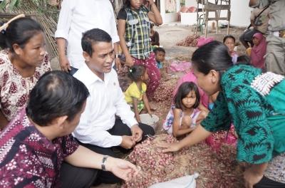 Impor Bawang Merah Mencederai Petani