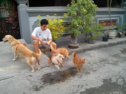 Doglover, Animallover, Human Lover