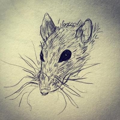 Vaksin Palsu dan Kumis Tikus. Apa bersamaannya?