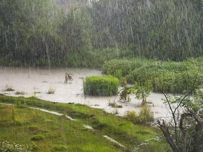 Ini Musim Mengajak Alam Berbasah-basah