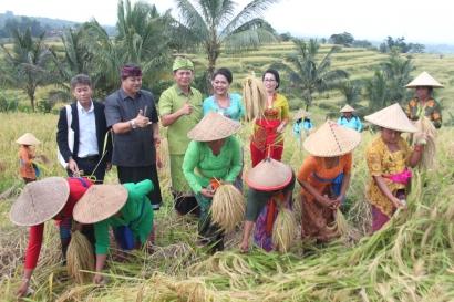 Jatiluwih Agriculture Festival 2017, Ingatkan Kita Bahwa Bali Punya Subak