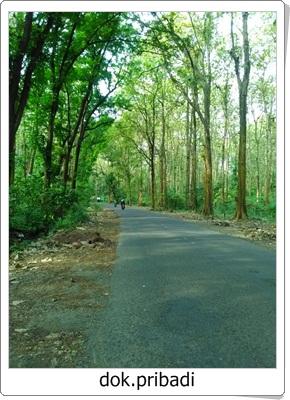 Goa Kiskendo, Pesona Alam tersembunyi di Kabupaten Kendal