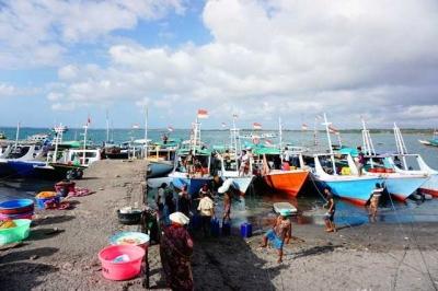 Menelusuri Pelelangan Hiu Ilegal Terbesar di Lombok