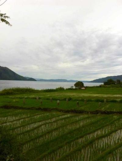 Mengelola Dampak Lingkungan dari Industri Pariwisata Danau Toba; Monaco of Asia atau Kubangan Raksasa?
