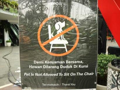 Hewan Dilarang Duduk di Kursi