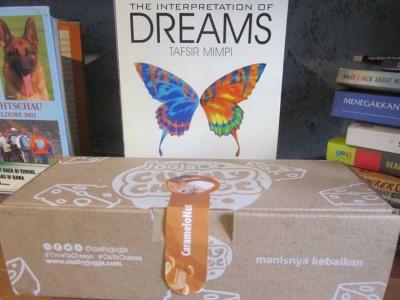 Ria Ricis, Freud, dan Mimpi