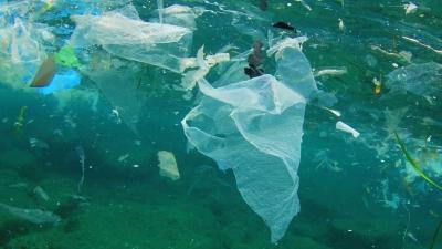 Bersama, Lautku Bebas Sampah