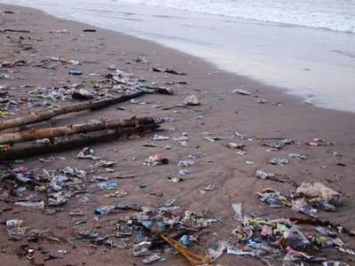 Pentingnya Peran Komunitas Mendukung Lautku Bebas Sampah