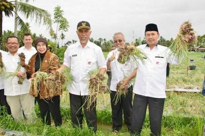 Kabag Perekonomian Pemko Padang Berladang Bawang Merah