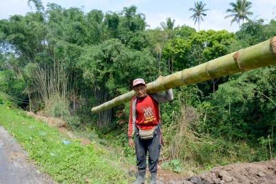 Darno Si Penebas Bambu Petung