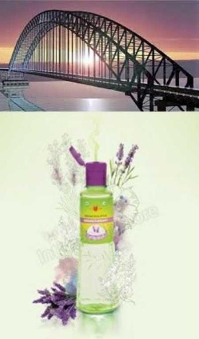 Kayu Putih Aroma, Jembatan Generasi Z yang Hidup di Dua Dunia