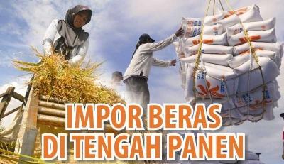 Pengendalian Impor Beras ala Prof BJ Habibie dan Beberapa Opsi Alternatif