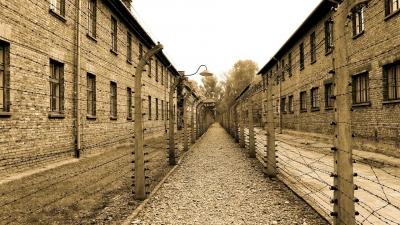 Pelajaran dari Mantan Tawanan Kamp Konsentrasi Nazi