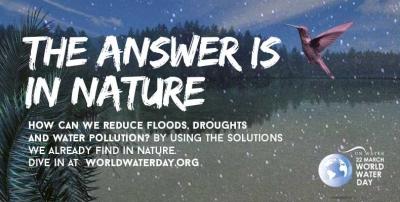 Hari Air Sedunia 2018, Mencari Solusi dari Alam