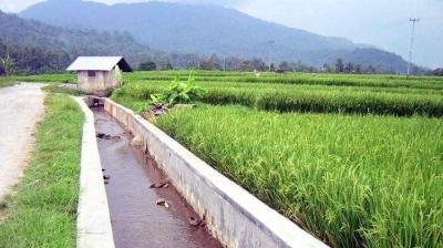 Air Irigasi dan Produksi Padi di NTT, antara Harapan dan Kenyataan