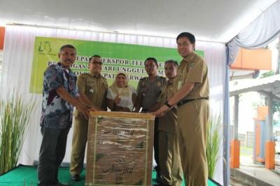 Ekspor Perdana Telur Tetas Unggas Lestari ke Myanmar