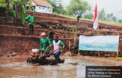 Indonesia Membantu Negara Lain Melalui