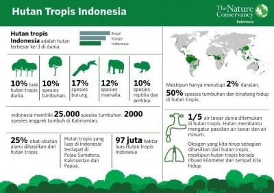 Hutan sebagai Warisan untuk Masa Depan