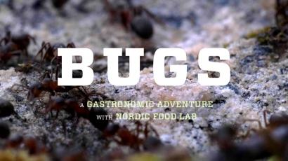 Mengenal Sosok Andreas Johnsen Lewat Film Bugs