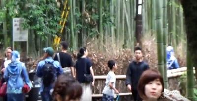 Ternyata Ada Juga yang Merayakan Lebaran di Hutan Bambu Arashiyama, Kyoto
