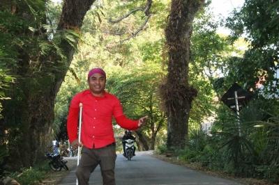 Se'i yang Manjakan Lidah, dan Istana Raja Amarasi serta Pohon-pohon Tropis Raksasa yang Manjakan Mata