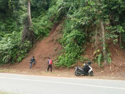 Waspada Potensi Longsor di Sepanjang Jalan Poros Palopo-Toraja Utara