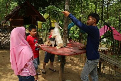 Memanjakan Buah Hati di Taman Kelinci Batam