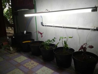 Mahasiswa Unand Membuat Inovasi Baru Terkait Teknologi Pertanian