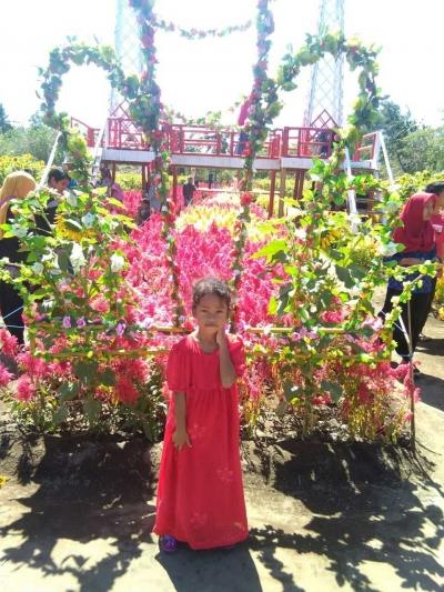Kebun Bunga Ambal, Wisata Baru Bernama Taman Asmara