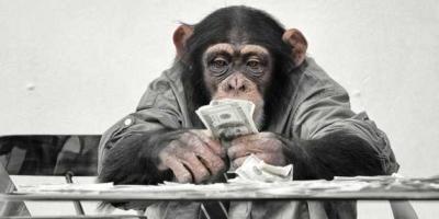 Bolehkah Publik Awam Ikut Mengkritisi Teori Darwin?