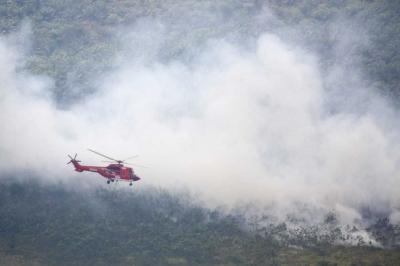 APP Sinar Mas Kerahkan Bantuan Intensif Padamkan Kebakaran Hutan di OKI Sumsel