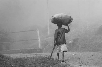 Puisi - [RTC] Balada Petani Tembakau