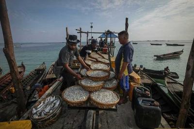 Alam Laut Bintan, Energi Baik yang Tercemar
