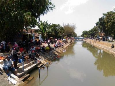 Serunya Mancing Berton-ton Lele di Selokan Mataram