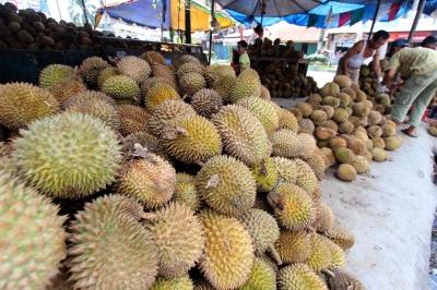 Mencicipi Menu Durian Mblenger di Outlet Dapur Mpok Duren Jogja