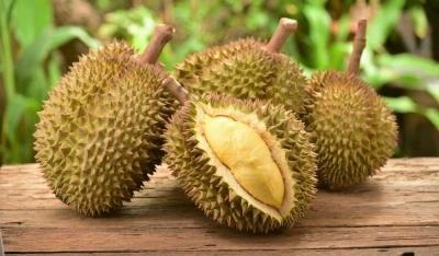 Tips Menjaga Kesegaran Rasa Buah Durian