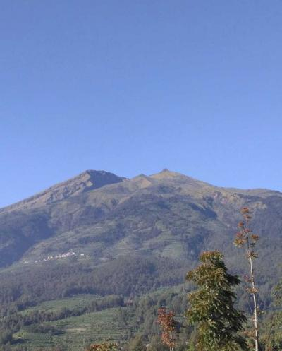 Hidroponik Gunung Berapi