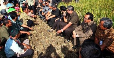 Kisruh Impor Beras Bikin Rindu Era SBY