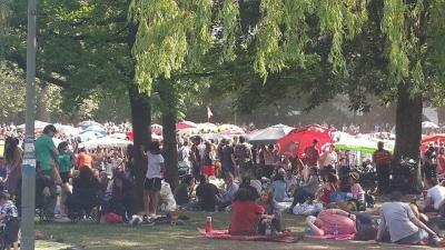Serunya Menikmati Kuliner Khas Thailand di  Thai Park, Berlin