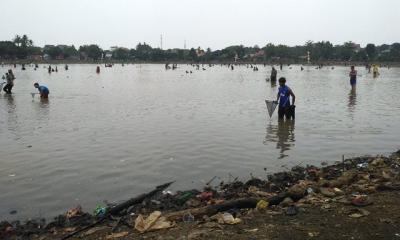 Kemarau Panjang, Warga Heboh Tangkap Ikan di Situ Cilodong